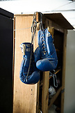 USA, Oahu, Hawaii, boxing gloves hanging from a locker at a gym in Honolulu