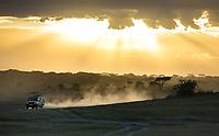 A safari vehicle explores Ndutu at last light.