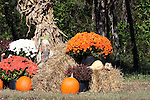 Fall Decorations in Branson Missouri