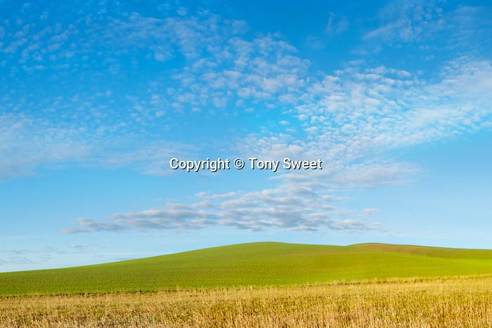 Stitched Panorama, kolor010