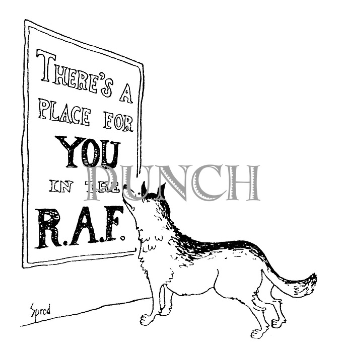 "(An Alsatian dog reads a poster ""There's a place for you in the RAF"")"