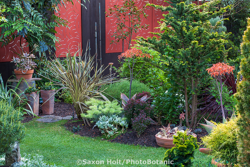 Red fence behind mixed foliage palnts in California plant collector garden - Carol Brant