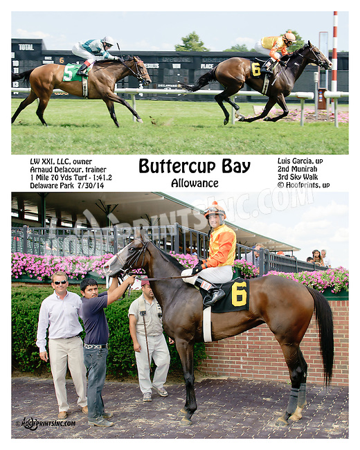 Buttercup Bay winning at Delaware Park on 7/30/14