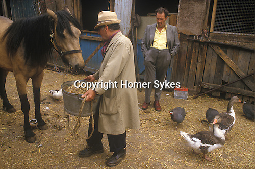 Johnny Pinto's Horse yard, Hackney 1980s London Totters rag and bone man.