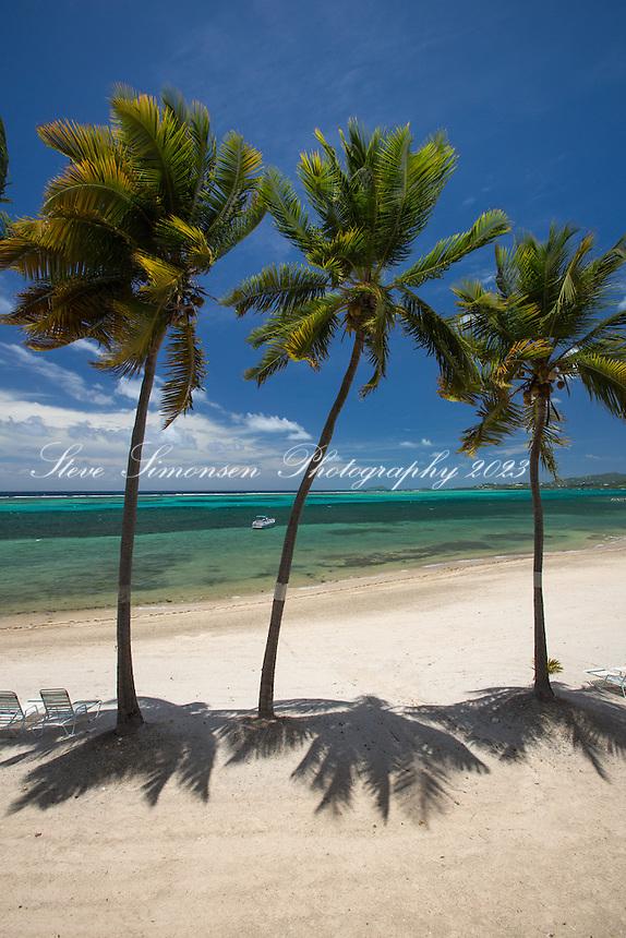 Sugar Beach<br /> St. Croix<br /> US Virgin Islands