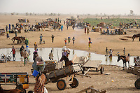MALI Fluss Bani, Menschen kommen zum Markttag in Djenne / MALI river Bani, people come for the market day in Djenne
