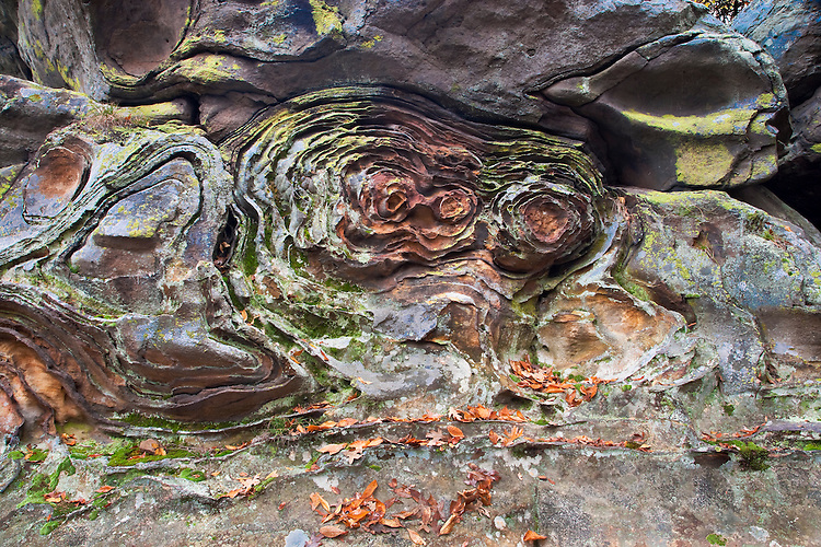Erosion Patterns In Lichen Covered Anvil Rock At Garden Of The Gods;  Shawnee National