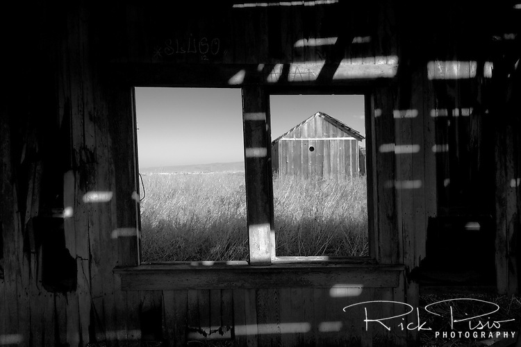 View through the window of an abandoned shack at the ghost town of Drawbridge in southern San Francisco Bay. Drawbridge was a hunting village started in the 1880's with the last resident leaving in the 1970's.