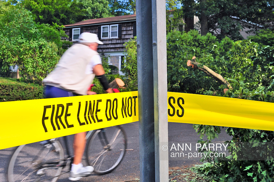 "Man bicycling past tree that Hurricane Irene blew down on top of fire truck (since removed) the day before. Yellow tape with ""Fire Line Do Not Cross"" in area where fire truck was hit. Park Avenue near intersection with Camp Avenue, in Merrick, Long Island, New York, USA, on August 29, 2011. NOTE: motion blur in bicyclist."