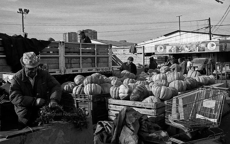 Santiago (Chile) 2018<br /> <br /> Marché La Vega.<br /> <br /> La Vega's market.