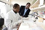 DOCTOR BWAYO SUPERVISE JAMES ONYANGO IN KAVI  LABORATORY IN NAIROBI ON APRIL 28, 2006