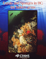 "Cover of ""Corals and Sponges in BC"" a special report by Canadian Parks and Wilderness Society."