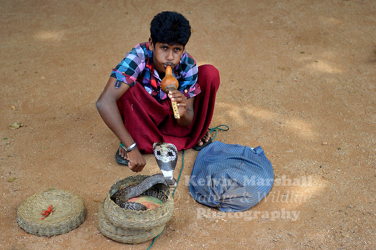 Young snake charmer performing for the tourists. Old Dutch Fort Galle, Sri Lanka.