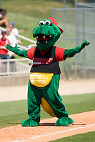 "Kannapolis Intimidators mascot ""Tim E. Gator"" is defeated once again in the race around the bases at Fieldcrest Cannon Stadium June 2, 2009 in Kannapolis, North Carolina. (Photo by Brian Westerholt / Four Seam Images)"