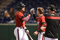 Louisville Cardinals infielder Zach Lucas (11) congratulated by Sutton Whiting (1) after scoring a run during a game against the USF Bulls on February 14, 2015 at Bright House Field in Clearwater, Florida.  Louisville defeated USF 7-3.  (Mike Janes/Four Seam Images)