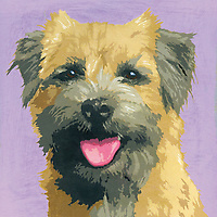 Painting of Border Terrier dog