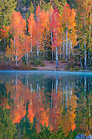 Aspen Mirror Lake near Duck Creek Village shows just how it got its name.