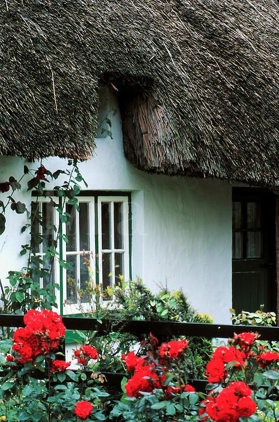 Thatch roof cottage, Ireland