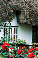 Thatch roof cottage, Ireland