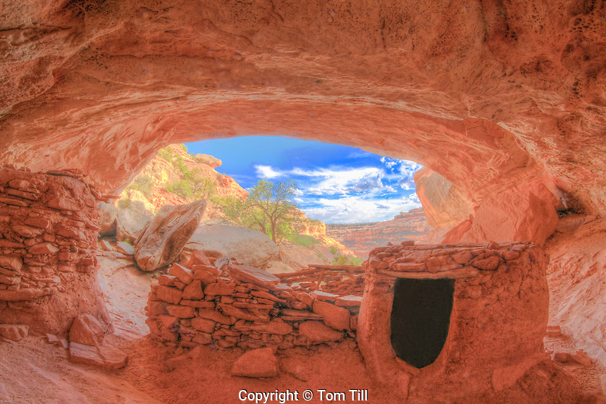 Ruin inside a deep alcove, Proposed San JUan/Anasazi Wilderness, Utah Ancient Basketmake Culture ruin in cave