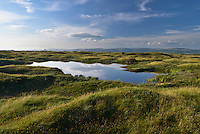 Dune slack pool and coastal dune system at Kenfig Nature Reserve