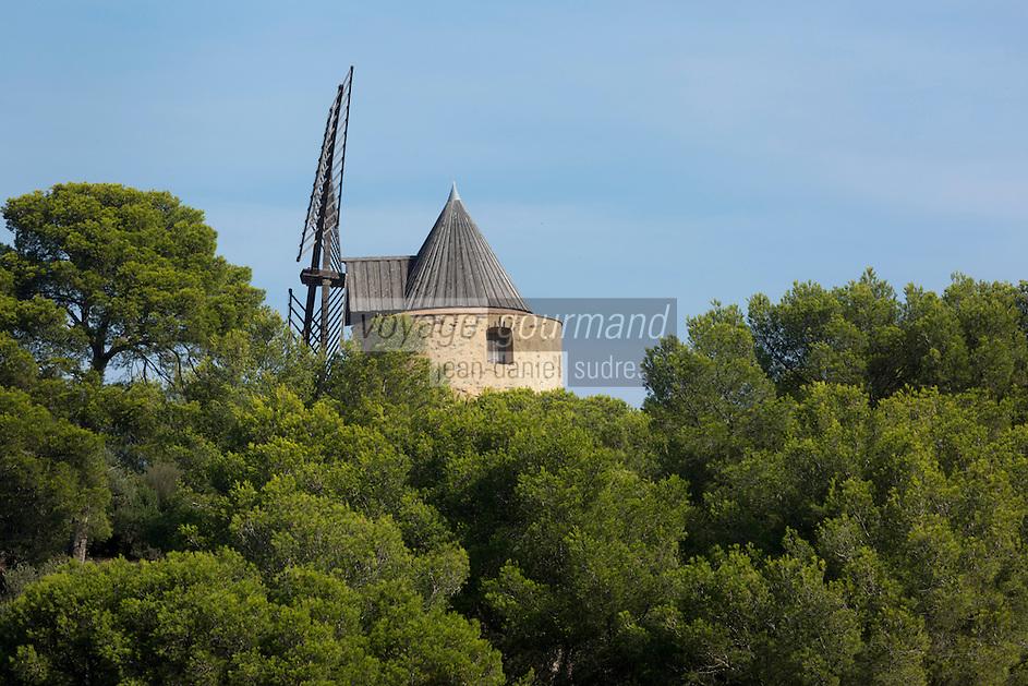 Europe/Provence-Alpes-Côte d'Azur/83/Var/Iles d'Hyères/Ile de Porquerolles:   Le Moulin du Bonheur sur Porquerolles,  vieux moulin à vent provençal datant du XVIIIème siècle.