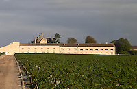 Vineyard. Winery building. Winery and vineyards at Chateau Mouton Rothschild, Pauillac. Medoc, Bordeaux, France