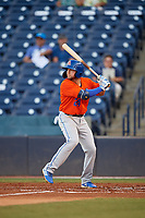 St. Lucie Mets Blake Tiberi (24) at bat during a Florida State League game against the Tampa Tarpons on April 10, 2019 at George M. Steinbrenner Field in Tampa, Florida.  St. Lucie defeated Tampa 4-3.  (Mike Janes/Four Seam Images)