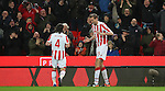 010217 Stoke City v Everton