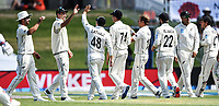 21st November 2019; Mt Maunganui, New Zealand;  Tim Southee and Neil Wagner celebrate the wicket of Root on international test match cricket, Day 1, New Zealand versus England at Bay Oval, Mt Maunganui, New Zealand.