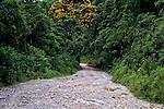 Estrada de terra Cunha Paraty. 2010. Foto de Flavio Bacellar.