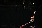 2011 W DII Tennis