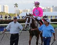 HALLANDALE BEACH, FL - JANUARY 28:  #1 Taghleeb with jockey Tyler Gaffalione heads to the winners circle after his win of the W. L.  McKnight Stakes on Pegasus World Cup Invitational Day at Gulfstream Park on January 28, 2017 in Hallandale Beach, Florida. (Photo by Liz Lamont/Eclipse Sportswire/Getty Images)