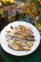 A dish of roasted fish with lemon and tarragon