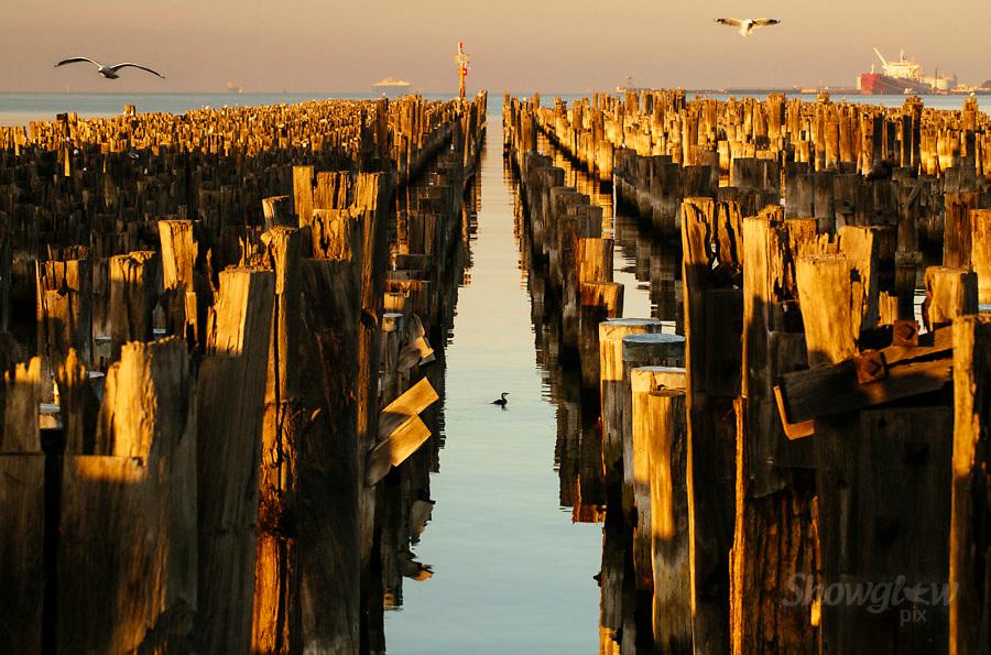 Image Ref: M287<br /> Location: Princes Pier, Melbourne<br /> Date: 04.06.17