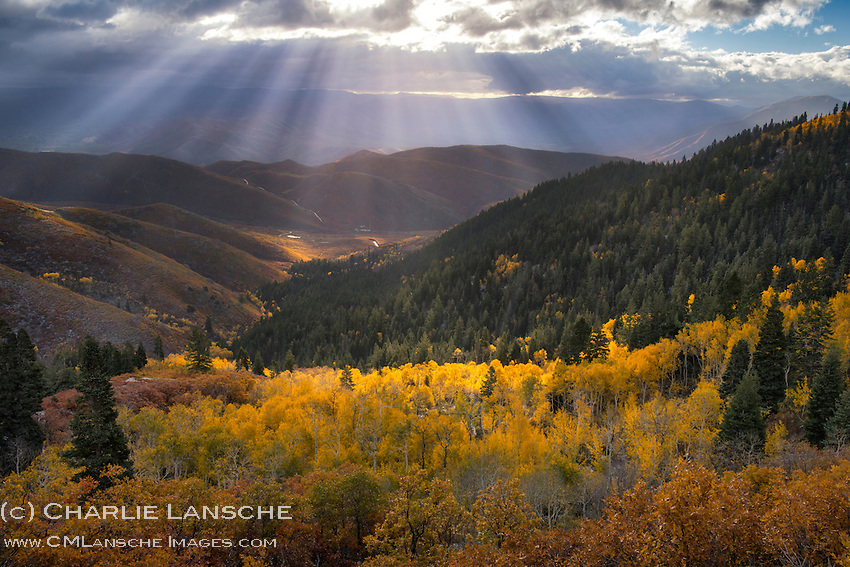 Autumn Light. Heaven and earth mingle in Utah's Wasatch Mountains. October 2014.
