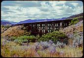 Trestle - Durango area?<br /> D&amp;RGW  Durango area ?, CO