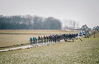 chasing peloton<br /> <br /> 70th Kuurne-Brussel-Kuurne 2018<br /> Kuurne › Kuurne: 200km (BELGIUM)