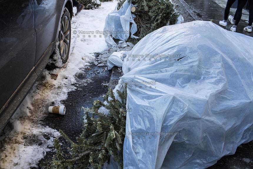 Alberi di Natale abbandonati dopo le feste Abandoned Christmas trees after holidays