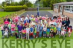 """ Horrible Hair Day "" was held last Friday in Knocknasna N.S Abbeyfeale with pupils , parents & staff arriving to the school with the most outrageous, very colorful and indeed horrible hair creations but it was done for very good cause as all proceeds go to Milford Hospice."
