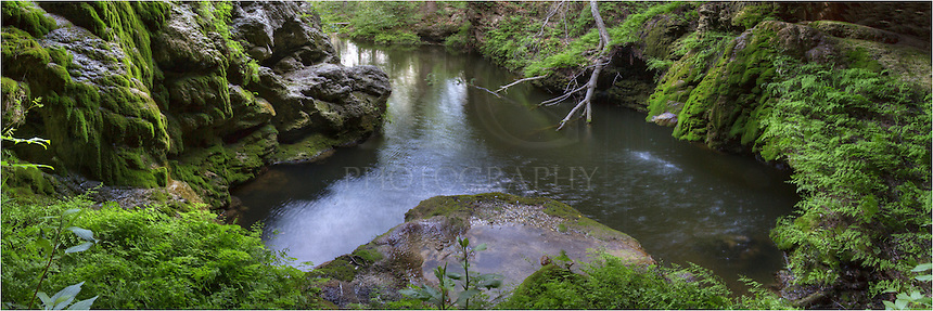 This Westcave Preserve image is a panorama stitching three images together to capture the width and beauty of this gem hidding along Hamilton Pool Road in the Texas Hill Country. You can see the water that is falling from the top of the travertine cliffs, as well as the moss and ferns that are clinging to the edge of the rock walls.