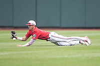 Louisville Cardinals outfielder Drew Campbell (1) attempts to make a diving catch during Game 7 of the NCAA College World Series against the Auburn Tigers on June 18, 2019 at TD Ameritrade Park in Omaha, Nebraska. Louisville defeated Auburn 5-3. (Andrew Woolley/Four Seam Images)