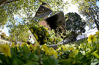 Guy Ngan, Polynesian Pagoda, Shapeshifter 2014, Civic Gardens, Lower Hutt, Wellington, New Zealand on Sunday 2 March2014.<br /> Photo by Masanori Udagawa.<br /> www.photowellington.photoshelter.com.