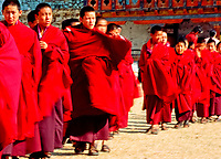 Asia, Buthan, Paro Dzong,Monks in a row leaving the monastery