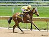 Mr Fahrenheit winning at Delaware Park racetrack on 6/18/14