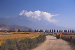 China, a rural landscape outside Lijiang, Yunnan Province