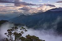 Tapichalaca Vista, Ecuador, Prov. Zamora-Chinchipe, Tapichalaca Biological Reserve