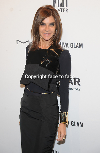 Carine Roitfeld attending the amfAR New York Gala to kick off Fall 2013 Fashion Week at Cipriani Wall Street In NewYork City on February 6, 2013...Credit: MediaPunch/face to face..- Germany, Austria, Switzerland, Eastern Europe, Australia, UK, USA, Taiwan, Singapore, China, Malaysia and Thailand rights only -