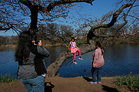 NEWARK, NJ - APRIL 14: People attend the 41st annual Cherry Blossom Festival in branch brook park on April 14, 2017 in Newark, New Jersey. Photo by VIEWpress/Kena Betancur