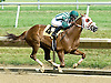 Snap It winning at Delaware Park on 6/30/10